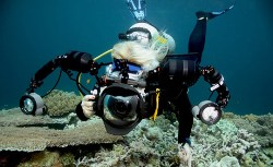 Learn Underwater Photography Course Canary Islands