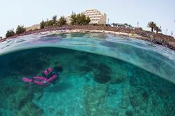 Canary Island Diving Offer