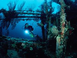 Grenada Dive Holiday Offer