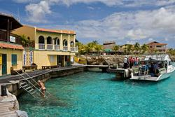 Bonaire Buddy Dives for FREE Offer