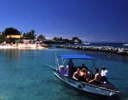 Tobago Dive Centre Store Bay