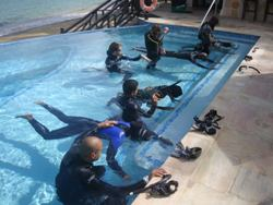 PADI IDC Instructor Dive Course Tobago Caribbean