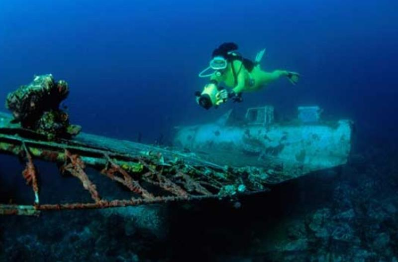 Ulong Channel Palau; One of the Best Dive Sites in the ... |Palau Dive Destinations