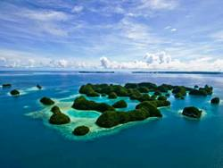SAVE 50% Off Palau Luxury Liveaboards