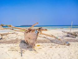 Zanzibar Scuba Diving Holiday Guide