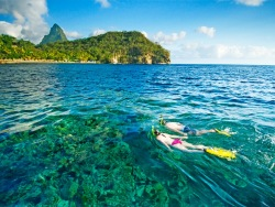 Where to Dive in the Caribbean Guide