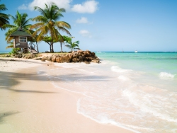 Tobago Dive Holiday Offers