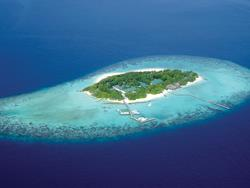 Maldives Dive Holiday Offer