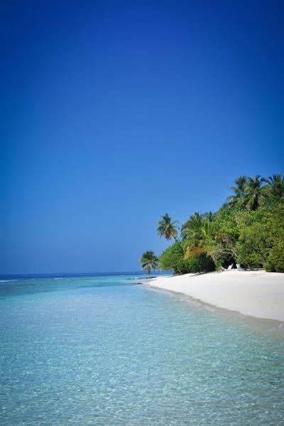 Luxury 4 Bandos Island Maldives Sportif Dive Holidays