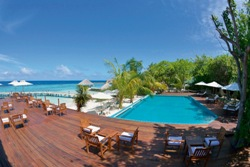 Maldives scuba diving holiday - Eriyadu Island Resort. Swimming pool and bar.