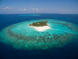 Maldives Scuba Diving Holiday PRICE PROMISE