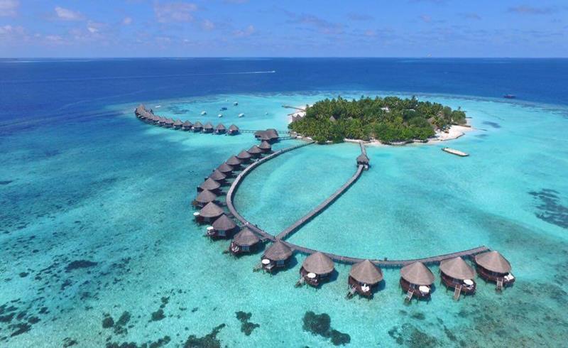 Best Diving Island In Maldives