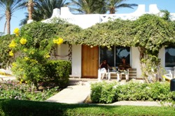 Hotel Shams Safaga - Red Sea. Bungalow.