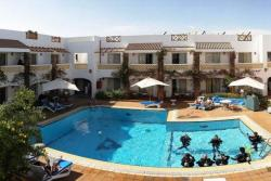 Camel Hotel - Red Sea. Swimming pool.