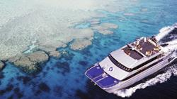 Australia Mike Ball Liveaboard Expeditions Coral Sea
