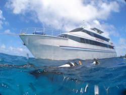 Australia Great Barrier Reef Liveaboard