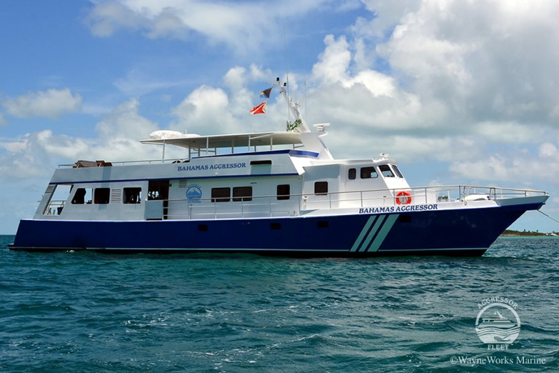 Bahamas Aggressor Luxury Scuba Diving Liveaboard - Caribbean.