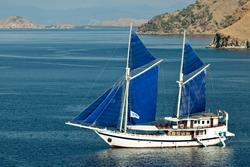 Komodo - luxury liveaboard diving itineraries.