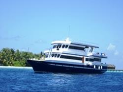 Maldives Liveaboard MYStingray