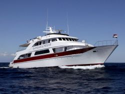 Red Sea Liveaboard OFFERS