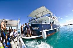 Palau Liveaboard Scuba Diving Holiday. Ocean Hunter III. Aft.