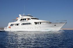 Red Sea Liveaboard Videos from Emperor