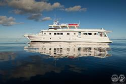 Turks & Caicos - Luxury Aggressor Liveaboard. Scuba diving holiday.