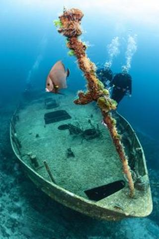 Bahamas Aggressor Luxury Scuba Diving Liveaboard - Caribbean. Wreck diving.