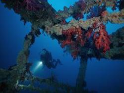 Reefs and Wrecks Cruise