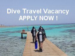 NEW Dive Travel Job Consultant Vacancy