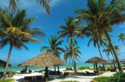 Win a Dive Holiday to Zanzibar